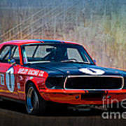 Shelby Racing Co Mustang Art Print