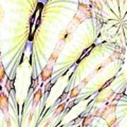 Shell Art 3 Art Print