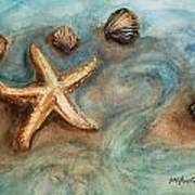 Shells With Star Art Print