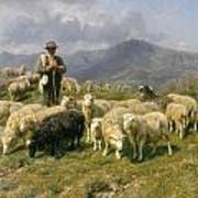 Shepherd Of The Pyrenees Art Print