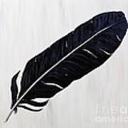 Shiny Feather Art Print