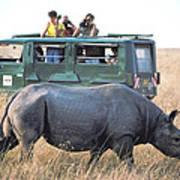 Shooting Rhinos Art Print