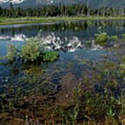 Shore Reflections Of Mt Tallac Art Print
