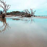 Shoreline - Driftwood Beach Jekyll Island Art Print