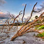 Shoreline Beach Driftwood And Grass Art Print by Jenny Ellen Photography