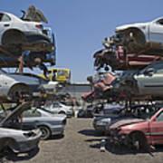 Shot Of Junkyard Cars Art Print