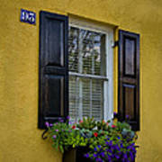Shutters And Window Boxes Art Print