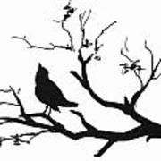 Silhouette Bird On Branch - To License For Professional Use Visit Granger.com Art Print