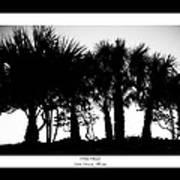 Silhouette Palm Sunset Art Print