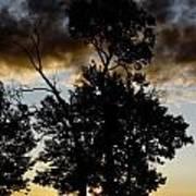 Silhouette Sunset Art Print