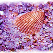 Silver Bells And Cockle Shells . . . Art Print