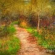 Simple Pathways Art Print
