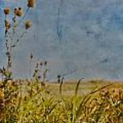 Singing In The Grass Art Print