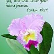 Single Pink Orchid Ps. 86v12 Art Print