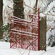 Single Red Gate Art Print