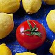 Single Tomato With Lemons Art Print by Garry Gay