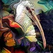 Sir Ibis Art Print