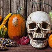 Skull And Gourds Art Print