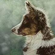 Skye Art Print by Lorraine McFarland