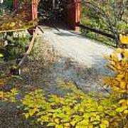 Slaughter House Bridge And Fall Colors Art Print by James Forte