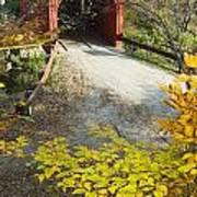 Slaughter House Bridge And Fall Colors Art Print