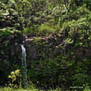 Small Waterfall - Hana Highway Art Print