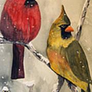 Snow Cardinals Art Print