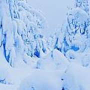 Snow-covered To Vallee Des Fantomes Art Print