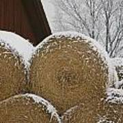 Snow Dusts Rolls Of Hay Art Print