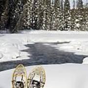 Snowshoes By Snowy Lake Lake Louise Art Print by Michael Interisano