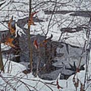 Snowy Pond Art Print