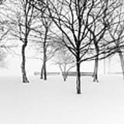 Snowy Trees And Park Benches Print by Meera Lee Sethi