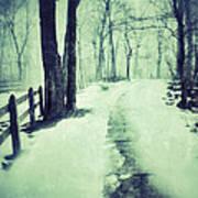 Snowy Wooded Path Art Print