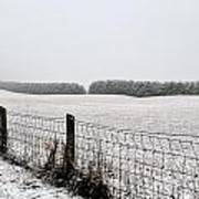 Snowyfence Art Print