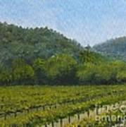 Solis Winery Art Print