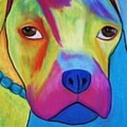 Sonny Blu Art Print
