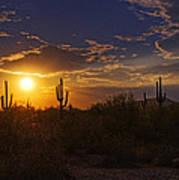 Sonoran Sunset  Art Print