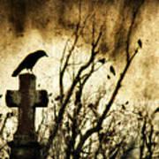 Soulful Crow Art Print