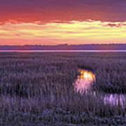 South Carolina Tidal Marshes Art Print