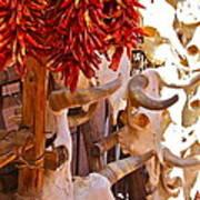 Southwest Skull Art Print
