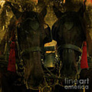 Spanish Carriage Horses Art Print by Lee Dos Santos