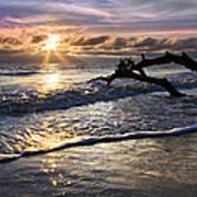 Sparkly Water At Driftwood Beach Art Print