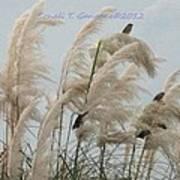 Sparrows In Breeze Art Print