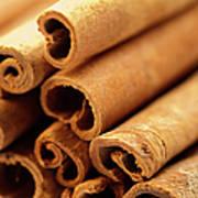 Spice, Cinnamon, Art Print