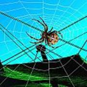 Spider On The Olympic Roof Art Print