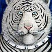 Spike The Tiger Art Print