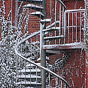 Spiral Staircase With Snow And Cooper's Hawk Art Print
