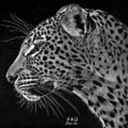 Spotted Solitude Art Print by Sheryl Unwin