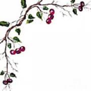 Spray Of Cherries Art Print
