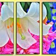 Spring Again Triptych Series Art Print